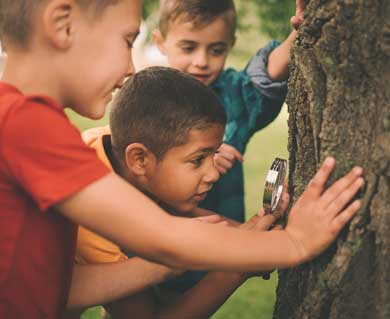 Discover nature at summer camp